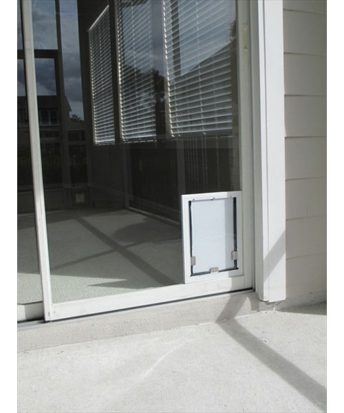 Pet Doors In Glass Tampa Bay Fl