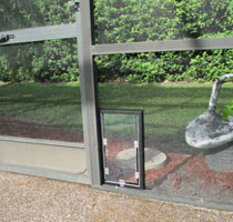 In-Glass Pet Door